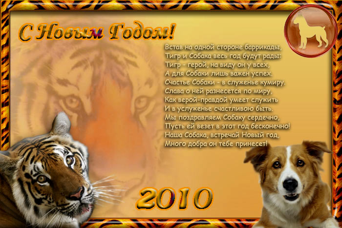Поздравление в год тигра 64
